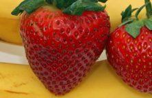 Jordbær banan smoothie
