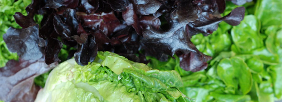Salattyper
